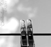 Twin Pegs by Trashvillain