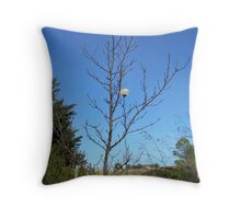 Where is everyone? Throw Pillow