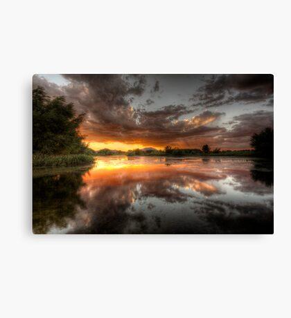 Swamp Glass Canvas Print