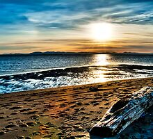 Log in Sunset (hdr) by James Zickmantel