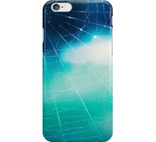 Spider's web iPhone Case/Skin