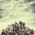 Daylight by Kingstonshots