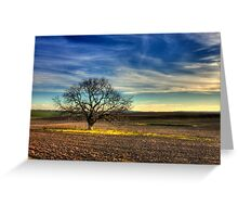 Ceres Tree Greeting Card