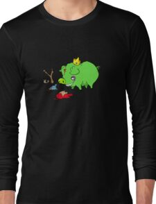 poor angry birds Long Sleeve T-Shirt