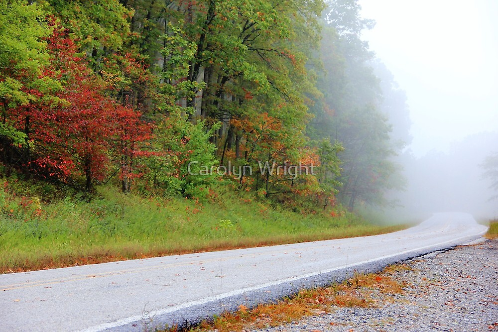 Along The Rural Road by Carolyn Wright