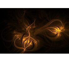 Night Glow Photographic Print