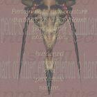 Sad Crustacean. by carboneye