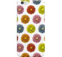 Funky Asters iPhone Case/Skin