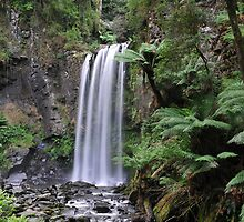 Majestic Hopetoun Falls - Otway Ranges by Alwyn Simple