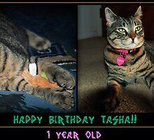 It's My Birthday!!! by jodi payne