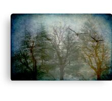 Songs from the Wood Canvas Print