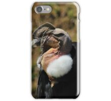 Head of a Male Andean Condor iPhone Case/Skin