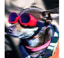 Attitude  Photographic Print
