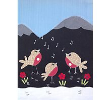Singing robins Photographic Print