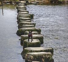 A Walk By Mere,Tarn and Water - Small Dog,Big Steps by Jamie  Green