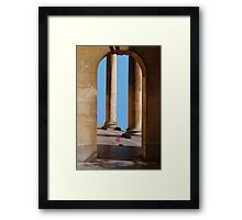 Fallen Rose Framed Print