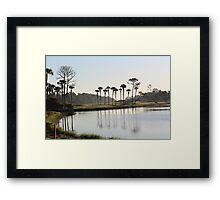 Early Morning Palms Framed Print