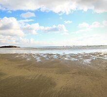 Good Harbor Beach:  Gloucester, Ma. by john forrant