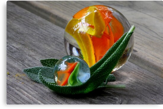 Salve Salvia by SmoothBreeze7