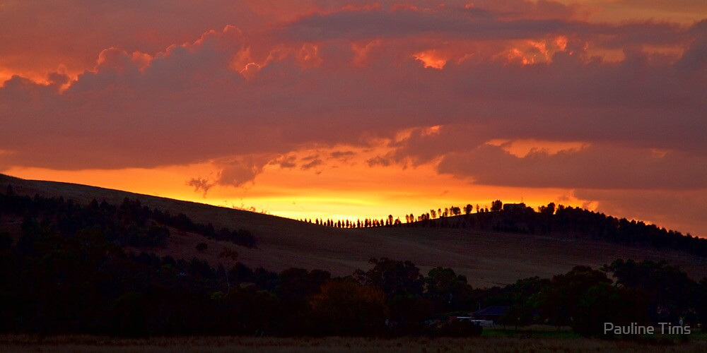 Sunset over Yan Yean by Pauline Tims