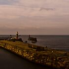 Memories afloat  off Whitby Harbour by robbtate