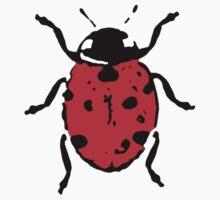 Ladybug / Ladybird by Matt West