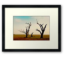 Bellbrae Trees Framed Print