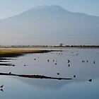 Kilimanjaro from Amboseli by sloweater