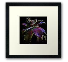 Enjoy The Wild Fractal Silence Framed Print