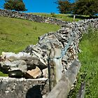 Peak District view with stone walls, Derbyshire by Magdalena Warmuz-Dent