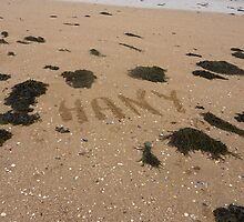 Guess Who Has Been To The Beach Again?? by Fara