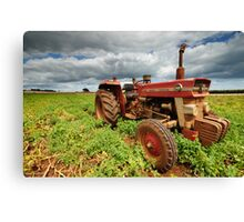 """New Group in Town """"Massey Ferguson & the Potatoes"""" Canvas Print"""