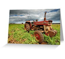 "New Group in Town ""Massey Ferguson & the Potatoes"" Greeting Card"