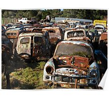 old cars collecting moss Poster