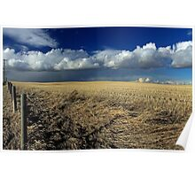 Alberta, Skies of blue and fields of gold Poster