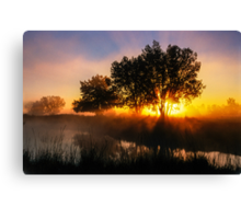 Buttercup Sunrise Canvas Print