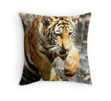Bengal Tiger Cub Enjoying Water Play  Throw Pillow