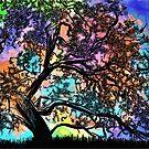 Rainbow Sunshine (Spring) by Andrew Simoni