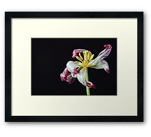 Withering Framed Print