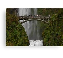 An Oregon Favorite Canvas Print