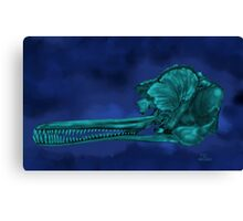 Ganges River Dolphin Skull Canvas Print