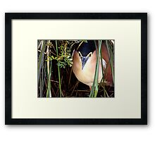 I'm Watching You Framed Print