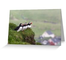 Three Puffins Greeting Card