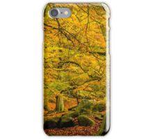 Padley Gorge iPhone Case/Skin