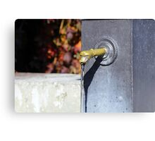 A welcome drink. Canvas Print