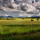 Scenic Rim by Kym Howard