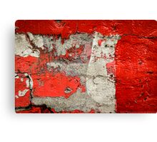 Dog on the red wall Canvas Print