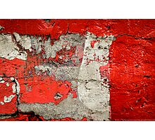 Dog on the red wall Photographic Print