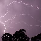 Lightning by Alex Colcheedas