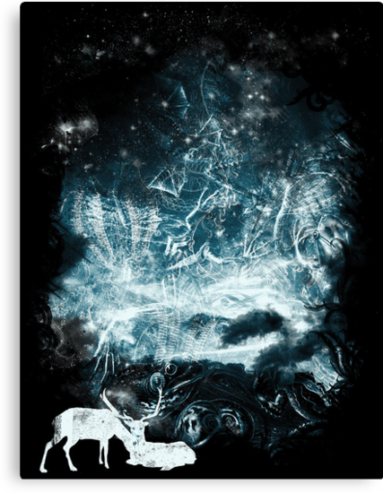 Aurora animalia by frederic levy-hadida